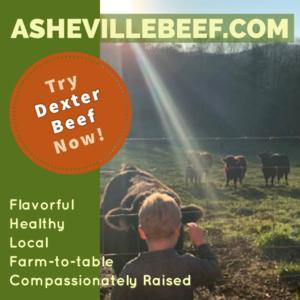 Try Dexter Beef Now!